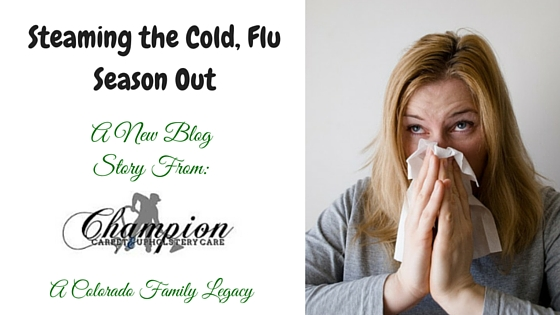Steaming the Cold, Flu Season Out of Your Home and Business