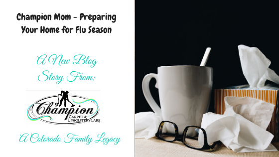 Champion Mom - Preparing Your Home for Flu Season