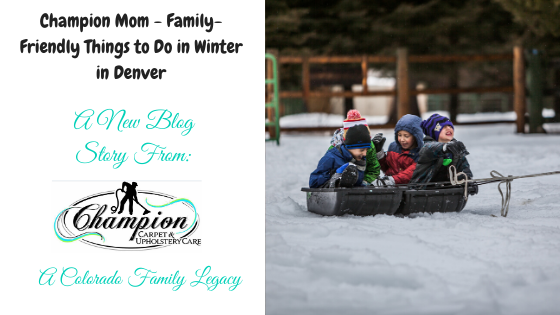 Champion Mom - Family-Friendly Things to Do in Winter in Denver