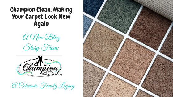 Champion Clean – Making Your Carpet Look New Again
