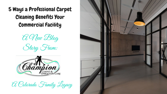 5 Ways a Professional Carpet Cleaning Benefits Your Commercial Facility