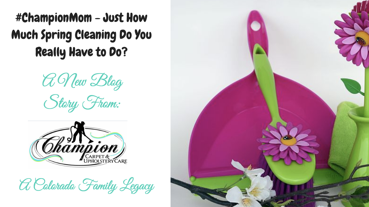 #ChampionMom - Just How Much Spring Cleaning Do You Really Have to Do?