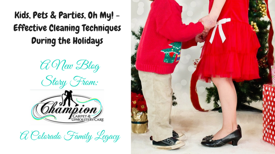 Kids, Pets & Parties, Oh My! - Effective Cleaning Techniques During the Holidays