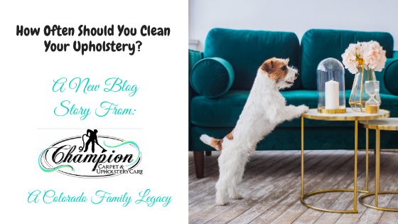 How Often Should You Clean Your Upholstery?