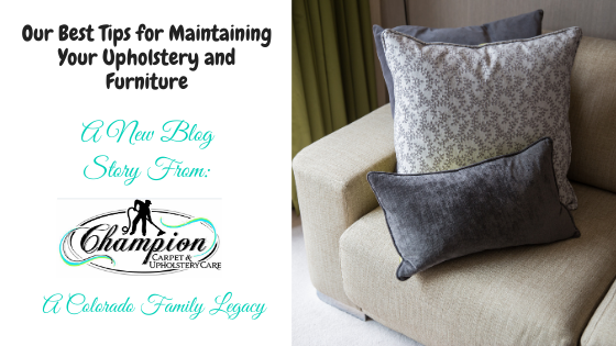 Our Best Tips for Maintaining Your Upholstery and Furniture